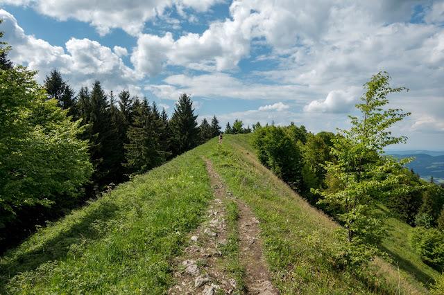 Von Hof bei Salzburg auf den Filbling  Wandern in der FuschlseeRegion 14
