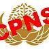 Sebanyak 238 Ribu Formasi CPNS, Jadi Rebutan 3,6 Juta Pelamar