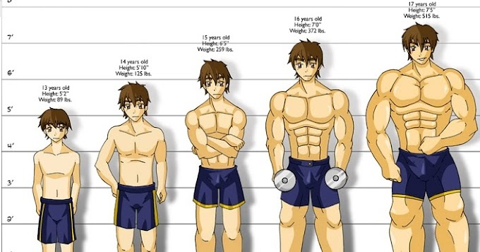 Most tips to Enhance Your Muscle Building Results