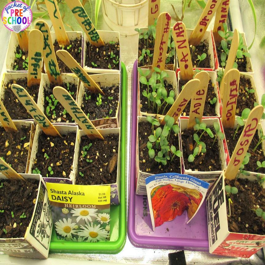 Spring Activities and Centers for Preschool, Pre-K, and ...