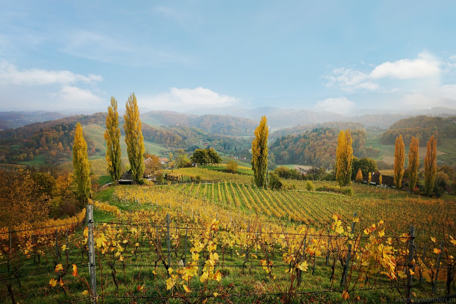 what to see in Austria, autumn in Austria, Austrian wine, wine street