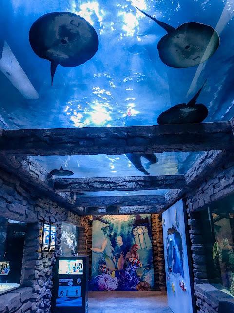 The Shore Ocenarium Melaka
