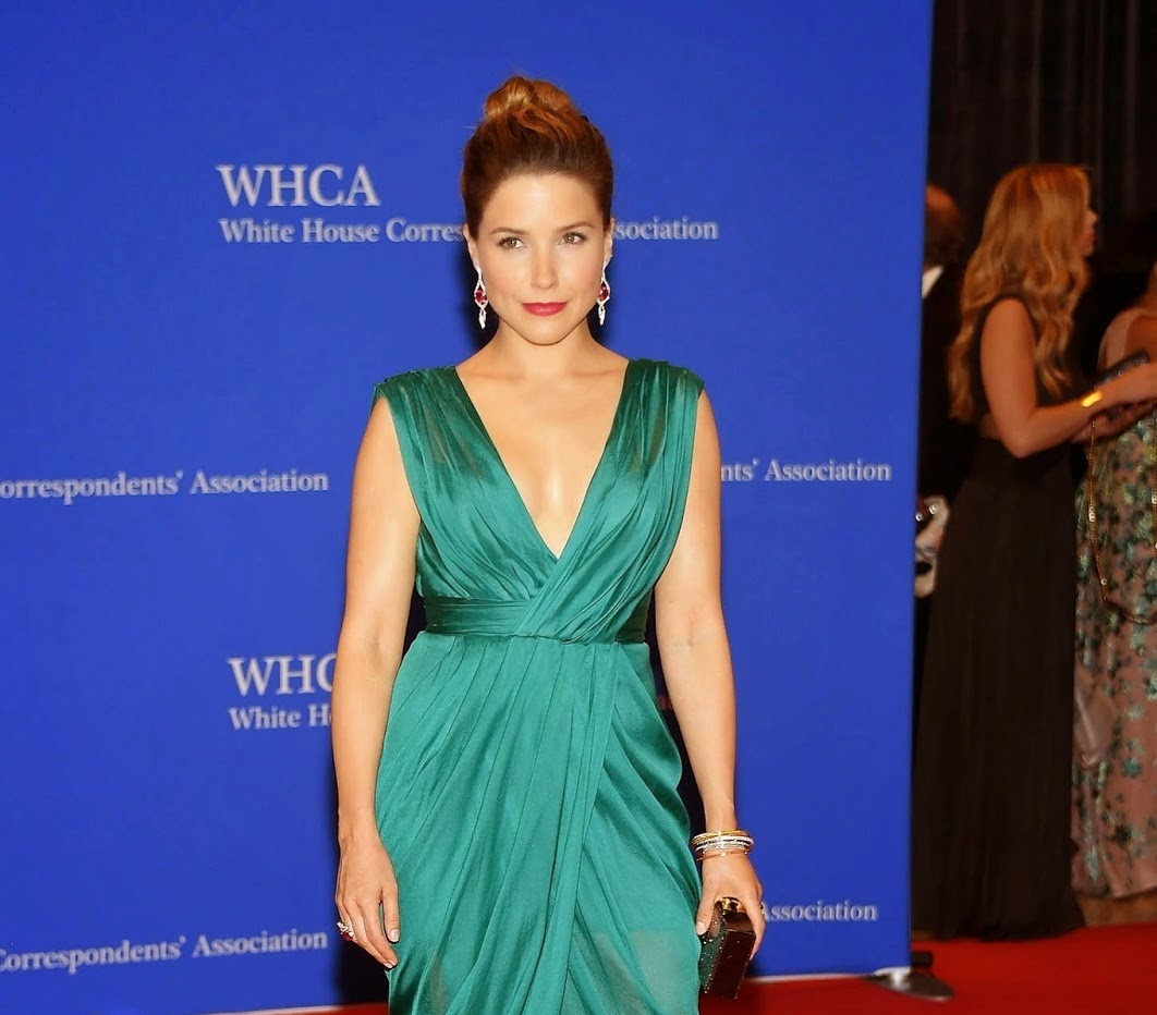 Sophia Bush in a plunging emerald dress at the 2015 White House Correspondents' Association Dinner