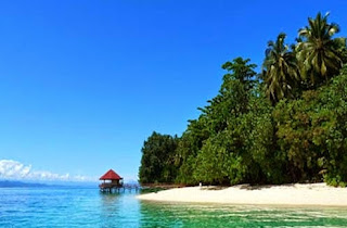 taman nasional teluk papua