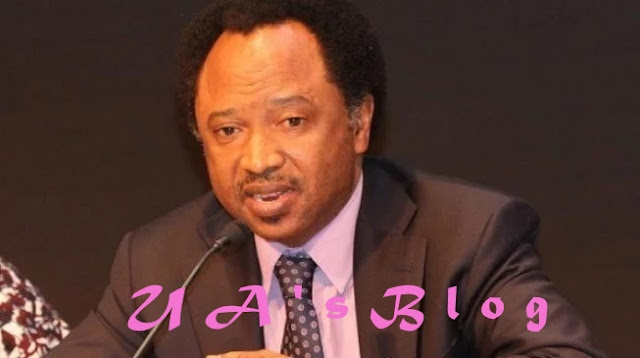 Atiku's harassment: Shehu Sani tells Buhari what to do