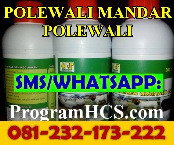 Jual SOC HCS Polewali Mandar Polewali