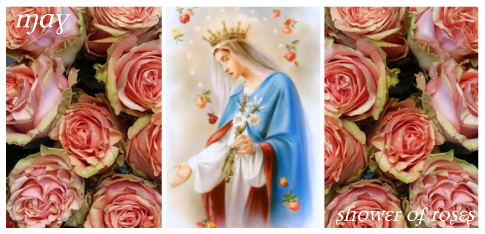 Shower of Roses: May :: Month Dedicated to the Blessed Virgin Mary