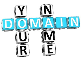 Your domain name registration