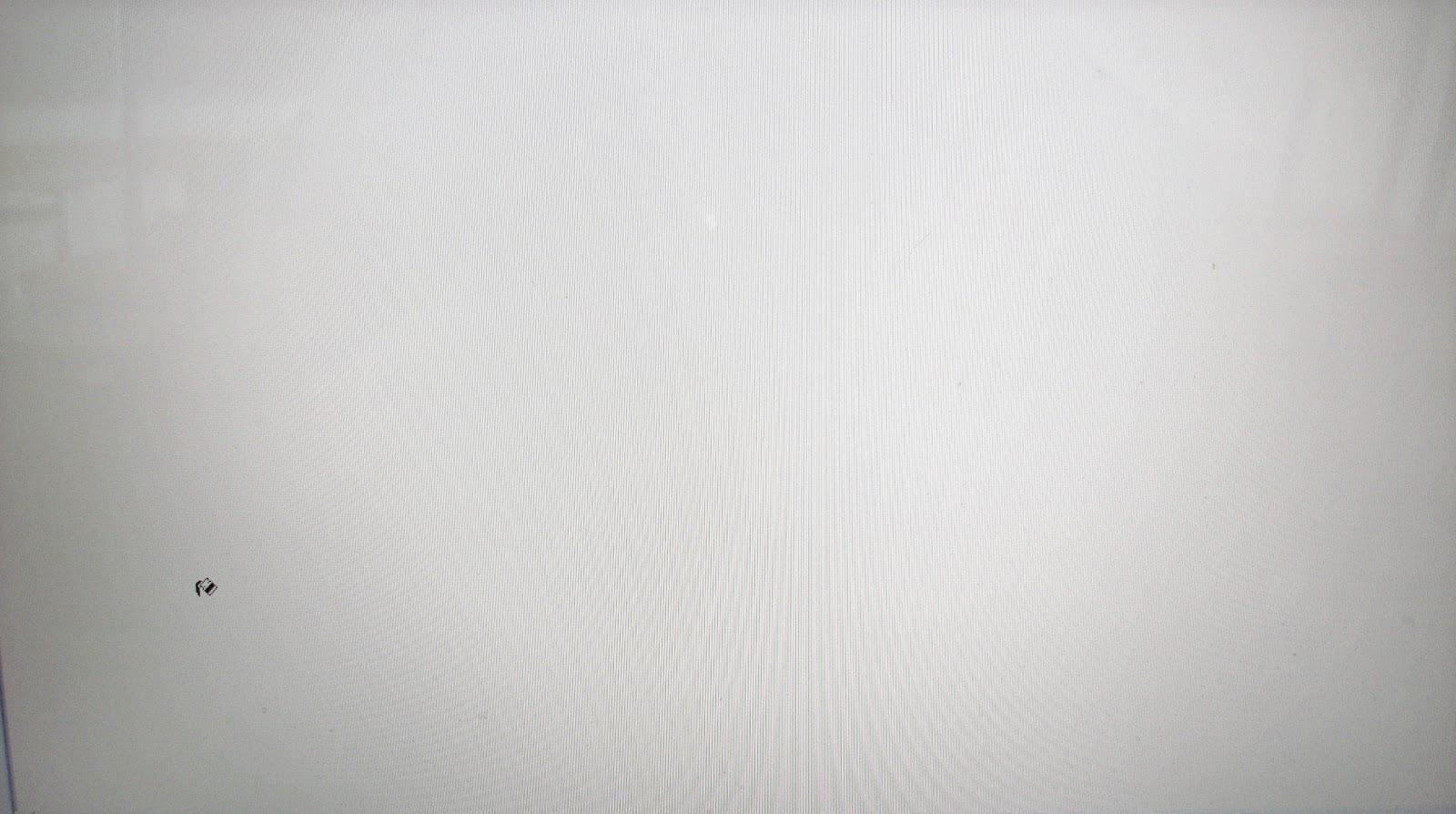 Background White Gallery: สิงหาคม 2013