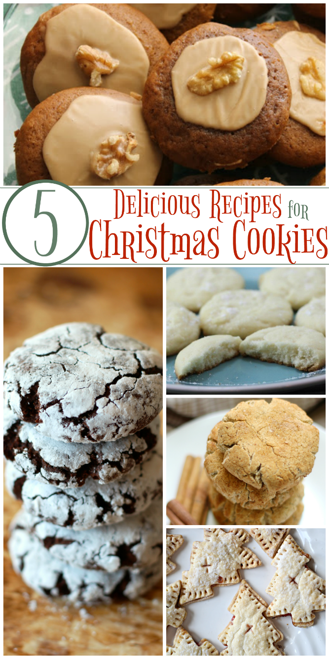 The Life of Jennifer Dawn: 5 Delicious Christmas Cookie Recipes ...