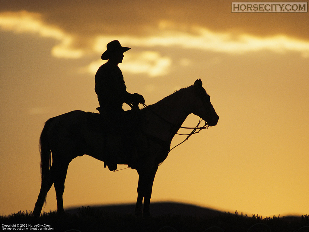 Positive Thinkers Journal: Cowboy Ethics by James Owen