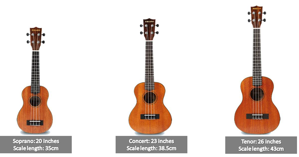 How To Choose Ukulele In Malaysia [Mato Music Ukulele Buying Guide] image 3