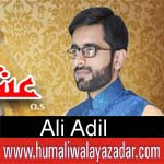 http://www.humaliwalayazadar.com/2018/03/ali-adil-manqabat-2018.html