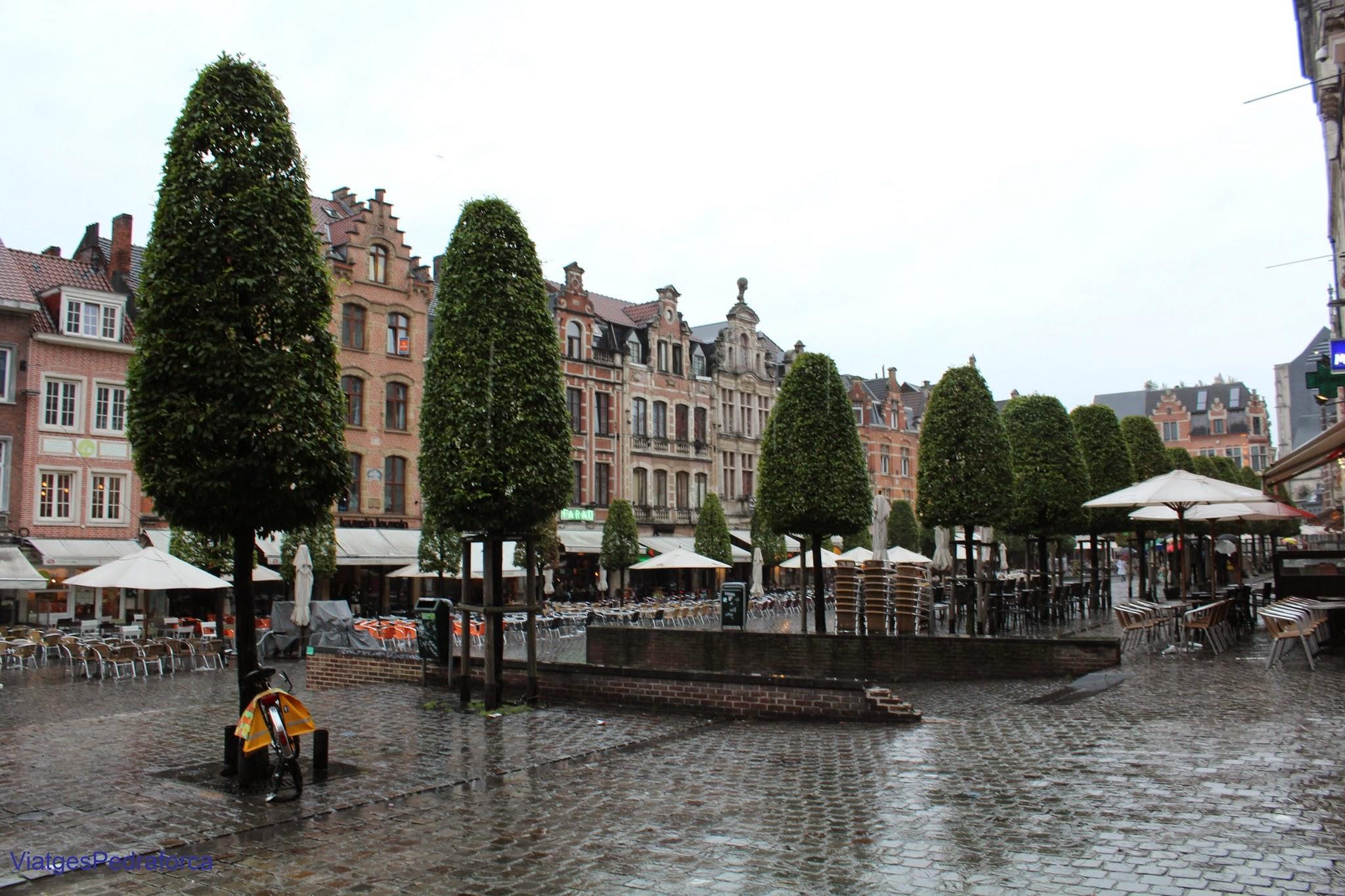 Oude Markt de Lovaina, Leuven, Flandes, Belgica