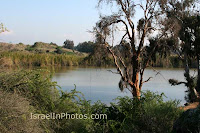 Israel in Photos - Pictures of Nahal Poleg (Stream) Nature Reserve
