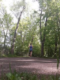 Coureuse, parc de la Visitation, forêt, arbre, été