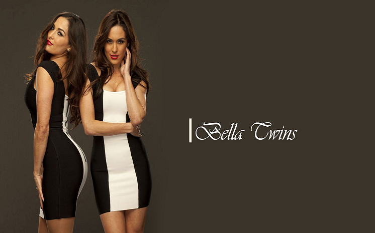 Bella Twins HD Wallpapers Free Download