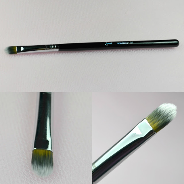 Sigma Concealer F70 Brush REVIEW