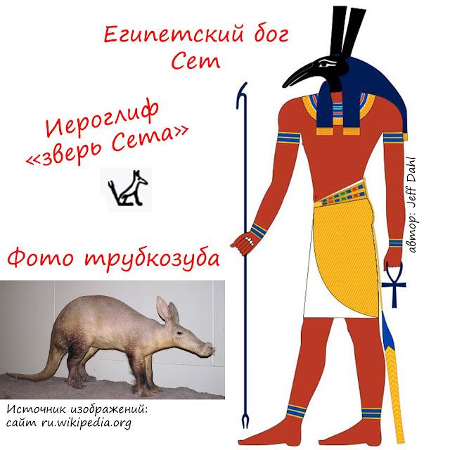 Трубкозуб - бог Сет египетской мифологии