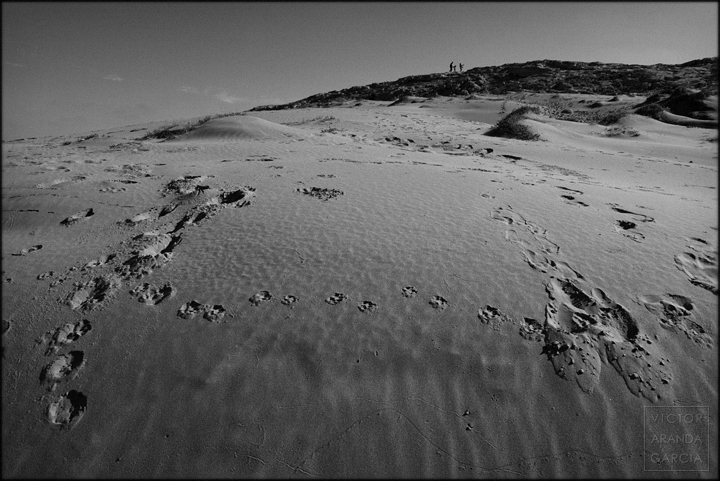 fotografia,duna,huellas,calblanque,paisaje,murcia,arte