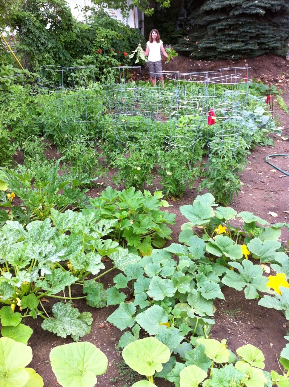Backyard Farming: Your Backyard Farm