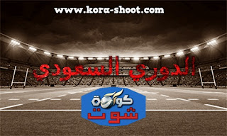 مشاهدة مباريات الدوري السعودي اليوم saudi-arabia-pro-league بث مباشر
