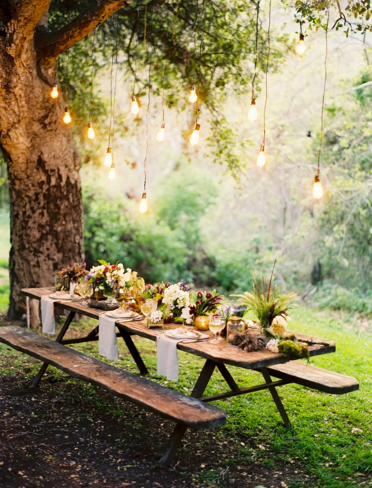 Picnic Table Under Tree