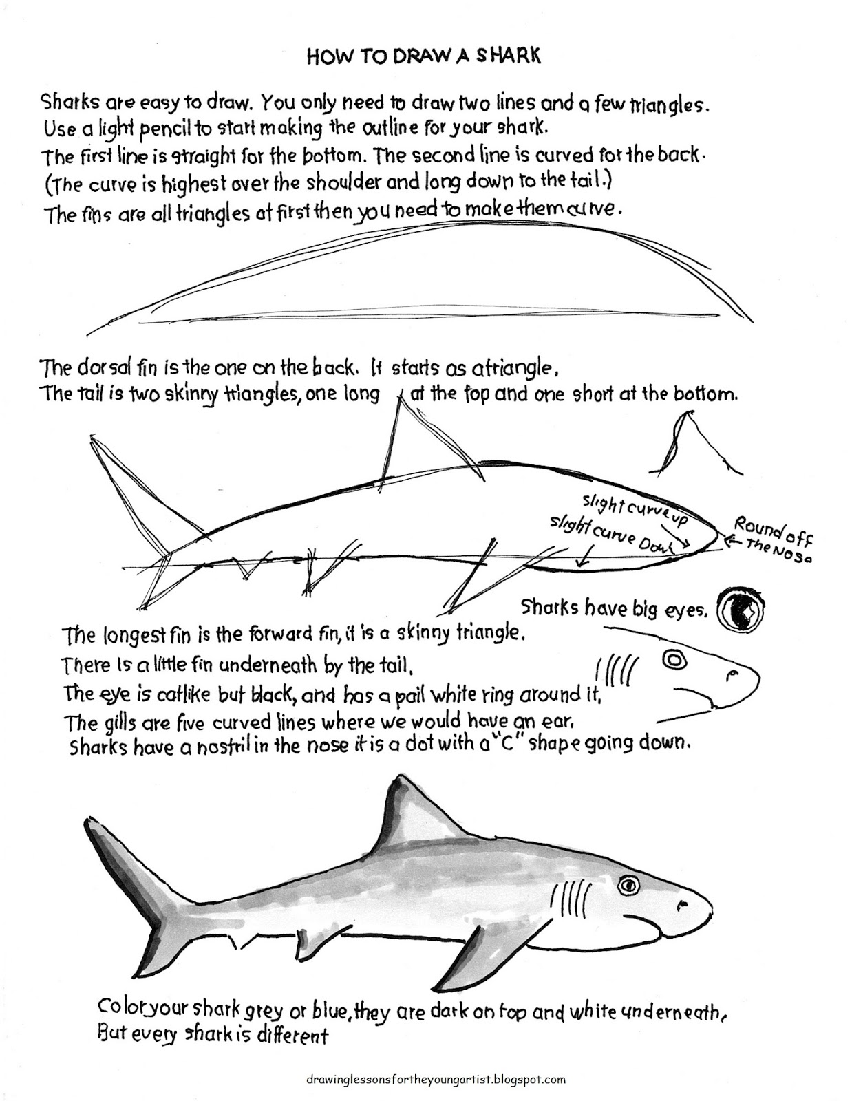 how to draw worksheets for the young artist how to draw a shark easy worksheet. Black Bedroom Furniture Sets. Home Design Ideas