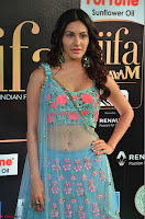 Amyra Dastur in Flower Print Choli Transparent Chunni at IIFA Utsavam Awards 09.JPG