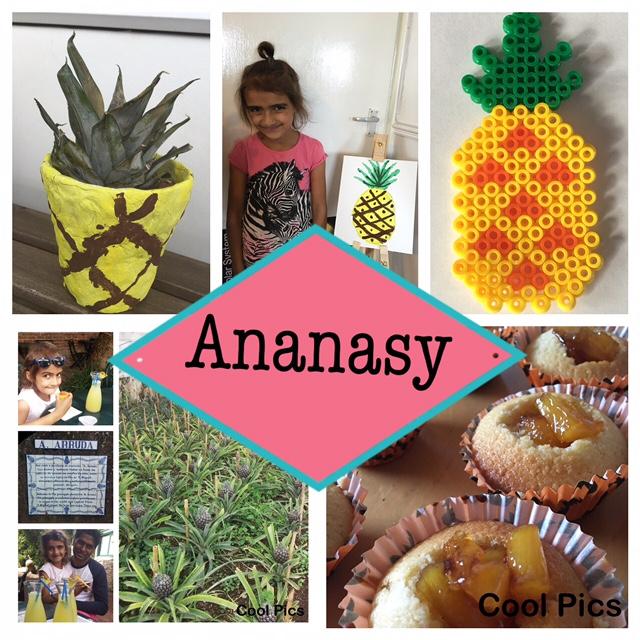 Rodzinne Podróże Ananasy Farma Babeczki Sadzonki I