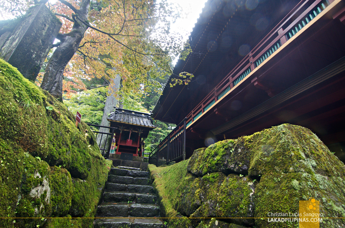 Nikko Temple Run