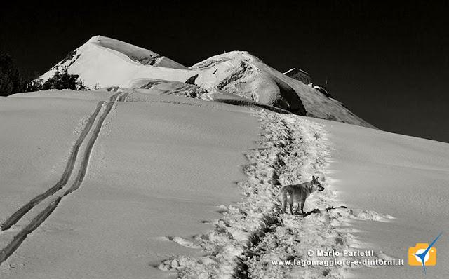 Dorsale del monte Gambarogno