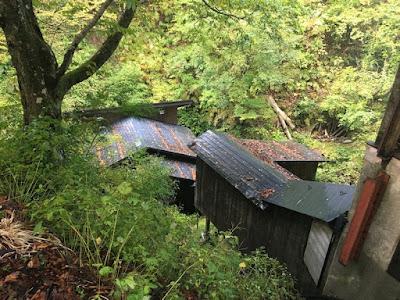 したの湯の屋根