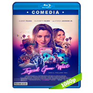 Ingrid Goes West (2017) BRRip 1080p Audio Dual Latino-Ingles