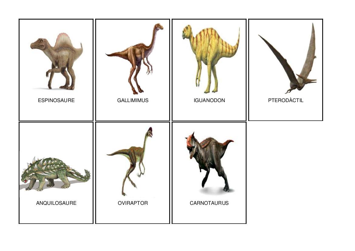 Que comian los dinosaurios carnivoros y herbivoros y omnivoros