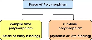 Explain What is Polymorphism? Static vs Dynamic Polymorphism Full Detail Programming