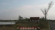 Desa penghasil Garam di Jepara