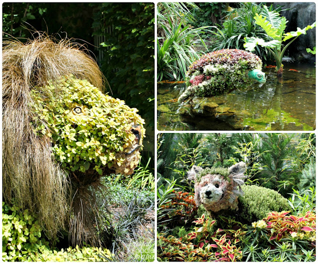 From now until October 29th, you can experience the wonder of horticultural living sculptures during the Topiaries at the Conservatory: Wild Wonders exhibit at the Franklin Park Conservatory in Columbus, Ohio.