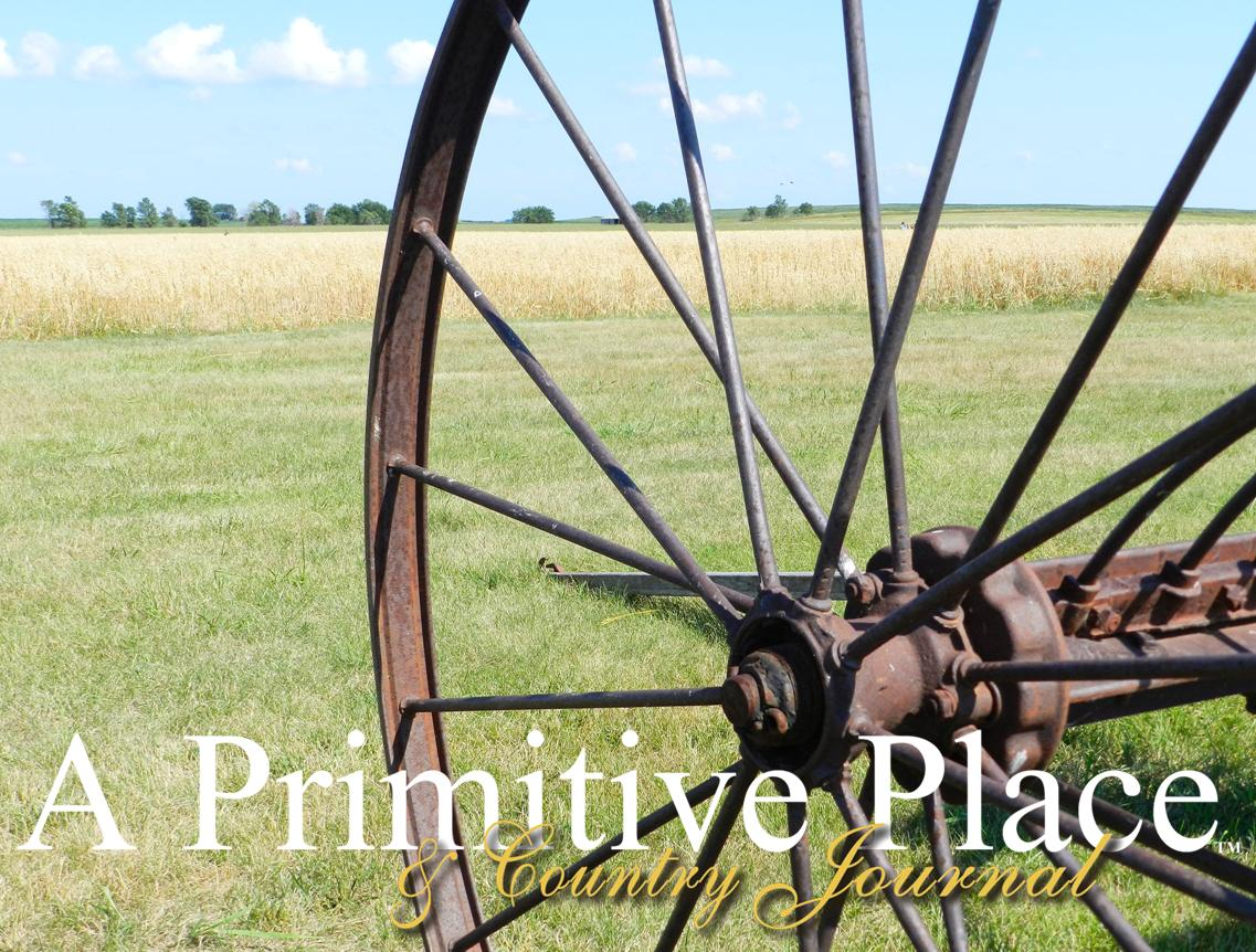 A Primitive Place & Country Journal Magazine: Our Country