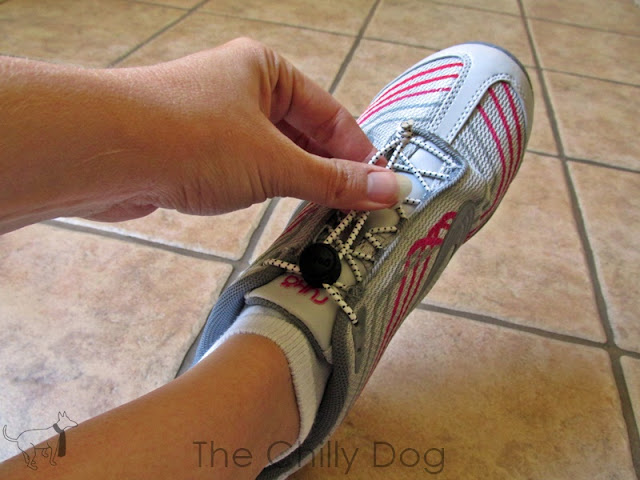 how to stop dog from stealing shoes