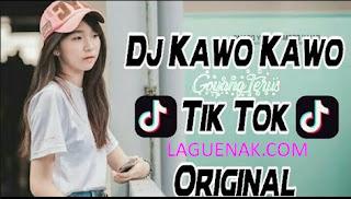 Kawo Kawo mp3 - Lagu Terbaru Tik Toker Indonesia | Laguenak.com