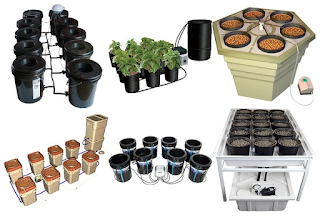 """DWC Hydroponic"",""best buy DWC hydroponic system"",""best purchase DWC hydroponic system"""
