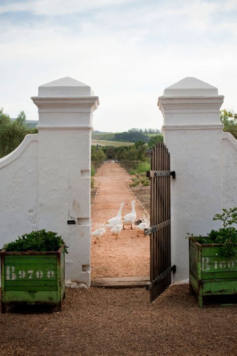French farmhouse entrance gate with vintage green painted planterboxes and ducks