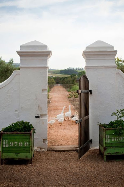 hellolovely-hello-lovely-studio-french-farmhouse-ducks-gate-path