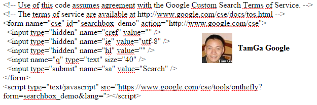 custom-term-of-service-google-searchbox