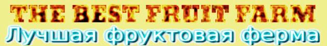 Лучшая фруктовая ферма -логотип.