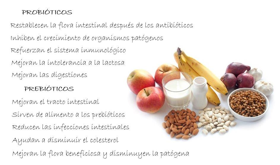 Locosxloeco - Alimentos sistema inmunologico ...