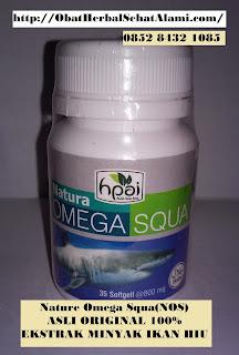 Obat Tradisional Kolesterol TINGGI Alami Dari Tumbuhan Herbal