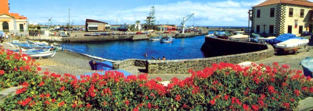 Puerto Pesquero de Puerto de la Cruz