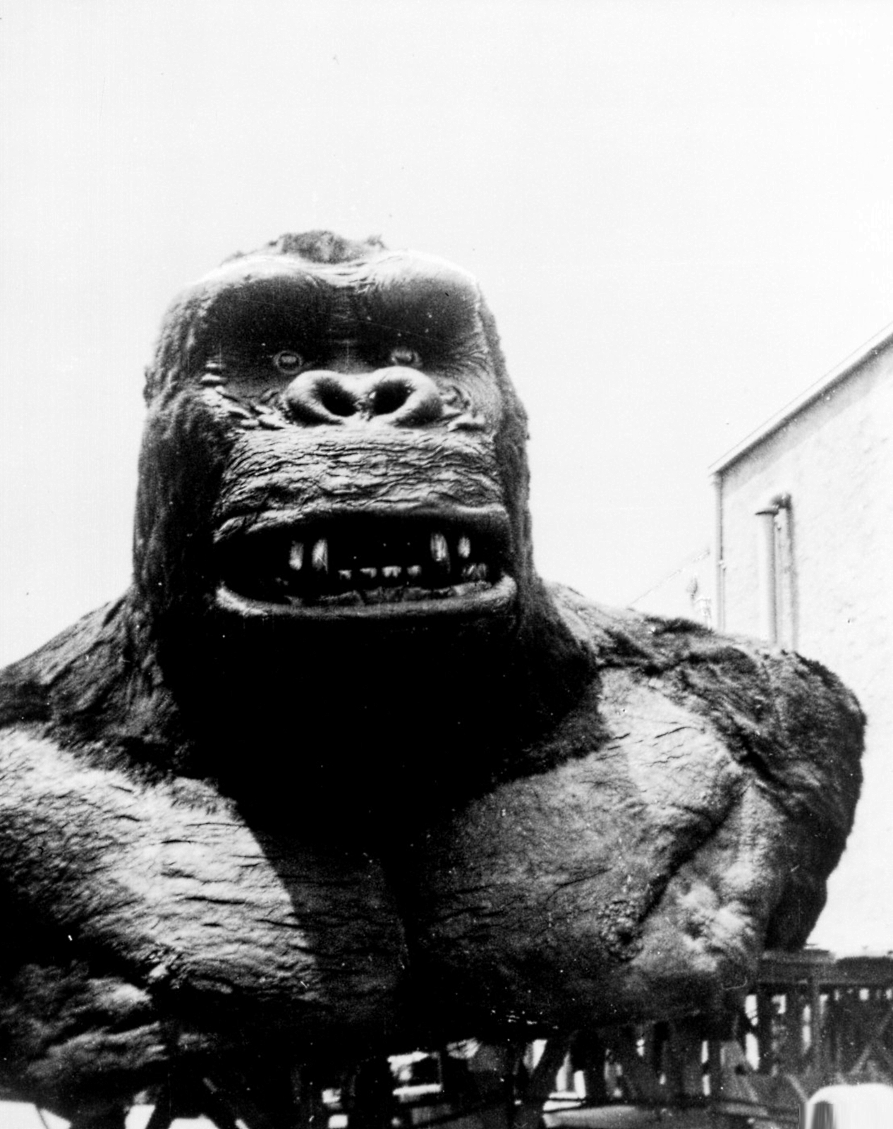 the role of special effects in the movie king kong by merian c cooper July 4, 2016 november 11, 2016 ian farrington king kong 1933, 8/10, black and white, ernest b schoedsack, king kong, merian c cooper a section-by-section review of the 1933 classic warning: there are spoilers ahead.
